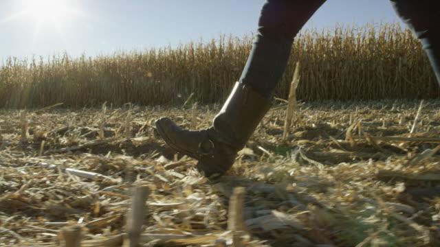 vidéos et rushes de jeune femme avec des bottes de marche à travers un champ de maïs à la récolte sous un ciel bleu - bottes
