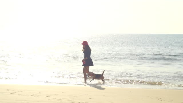 Young Woman with dog on the beach slow motion Young Woman with dog on the beach slow motion hound stock videos & royalty-free footage