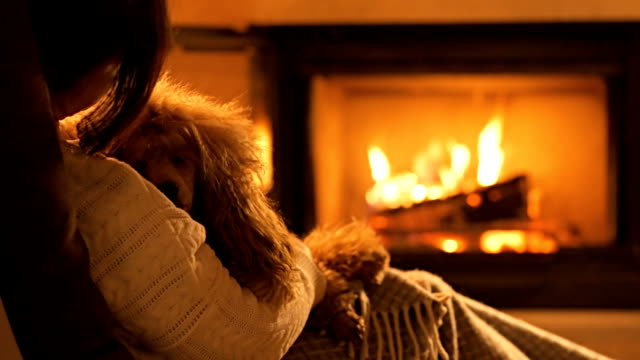 Young woman with dog sitting by the fireplace. Young woman with dog sitting by the fireplace. fireplace stock videos & royalty-free footage