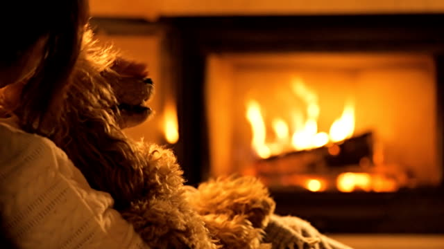 vídeos de stock e filmes b-roll de young woman with dog sitting by the fireplace. - aconchegante