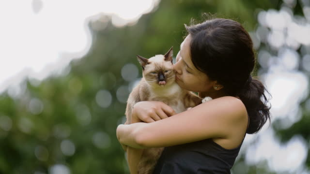 Young woman with frisky kitten