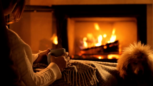 Young woman with her dog sitting at home by the fireplace and drinking a mug of cocoa . Young woman with her dog sitting at home by the fireplace and drinking a mug of cocoa . fireplace stock videos & royalty-free footage