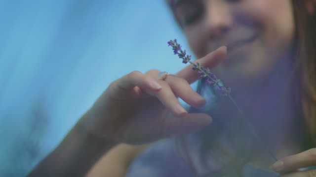 Young woman with lavender flowers in farm Thoughtful young woman relaxing in farm. Smiling female is holding lavender flowers. She is on vacation. lavender plant stock videos & royalty-free footage