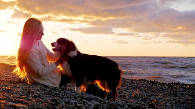 Young woman with long blond hair playing with his dog. Sitting on the beach at sunset and orange sky video