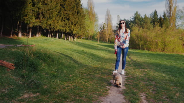 Young woman with sunglasses walking with dog in park. Goes against the backdrop of picturesque nature along the path video