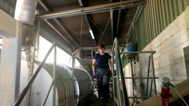 young woman worker in raw material processing facility - ape operaia video stock e b–roll
