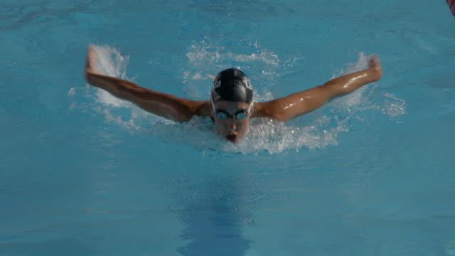 バタフライ泳法を実行する若い女性。 - 水泳点の映像素材/bロール