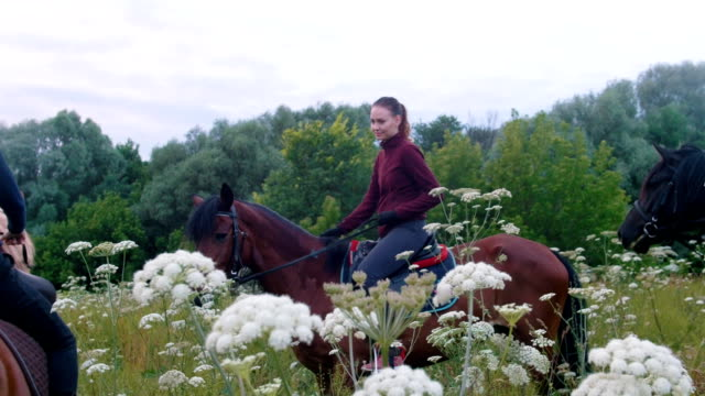 young women riders on horseback walking in the field with flowers - criniera video stock e b–roll