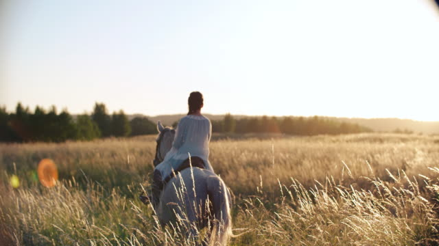 young women riding horses on grassy field - stallone video stock e b–roll