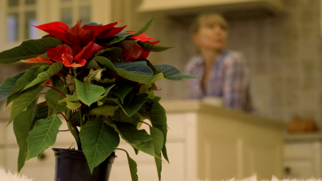 Young women talks at the background of christmas flower video