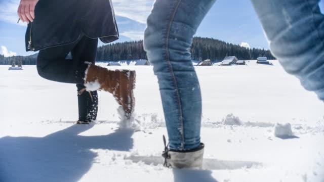 Young women walking through snow video