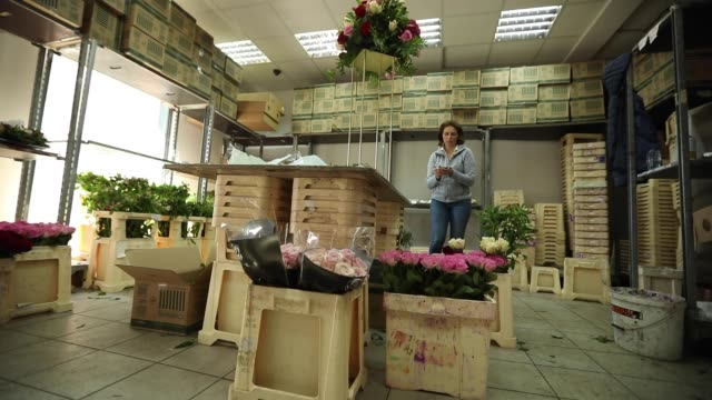 Your order is ready ! Female worker at florist workshop using a smart phone at warehouse, low angle view saleswoman stock videos & royalty-free footage
