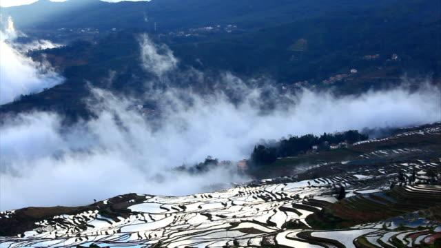 Yuanyang Terraced Fields video