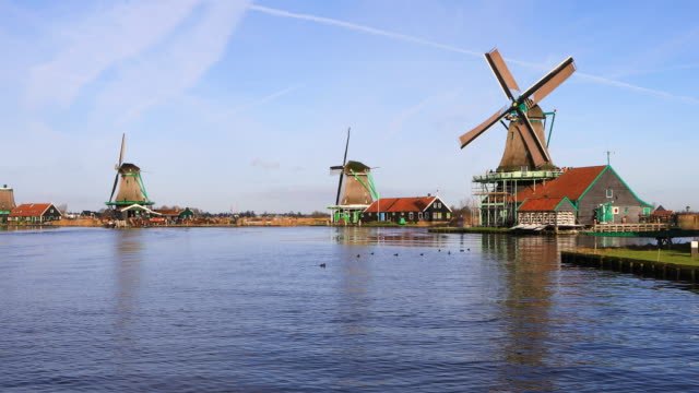 zaanse schans - amsterdam video stock e b–roll