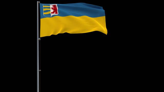 zakarpattia oblast flag on transparent background, 4k footage with alpha transparency - transcarpazia video stock e b–roll
