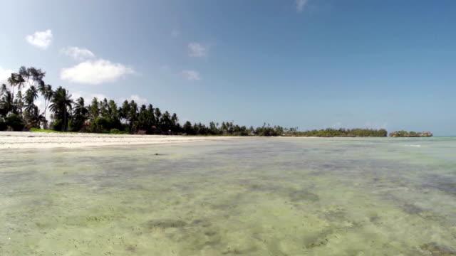 zanzibar - panoramic view at surface of the sea - ekvatorn latitud bildbanksvideor och videomaterial från bakom kulisserna