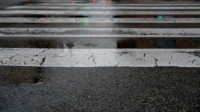 Zebra Crossings with Traffic Light and public transport at raining video