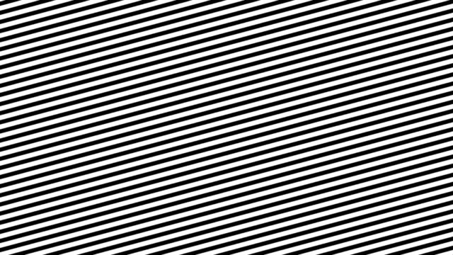 Zebra Line Movement Animation Background. Seamless Loop video