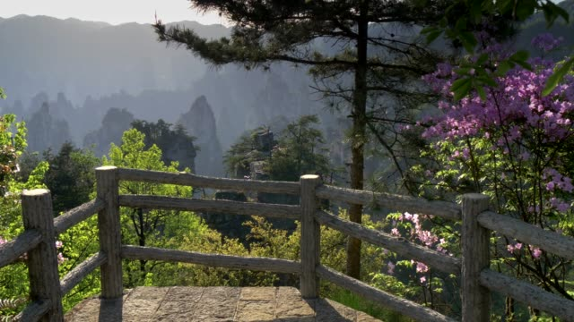 Zhangjiajie, Hunan, China. Gimbal shot of flora and cliffs during a bright sunny day in Wulingyuan scenic and historical site. 4K, UHD Zhangjiajie, Hunan, China. Gimbal shot of flora and cliffs during a bright sunny day in Wulingyuan scenic and historical site. 4K, UHD national landmark stock videos & royalty-free footage