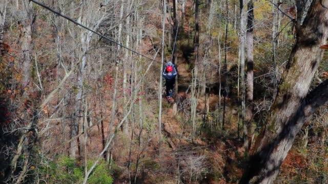 ziplining attraverso la foresta - cavo d'acciaio video stock e b–roll