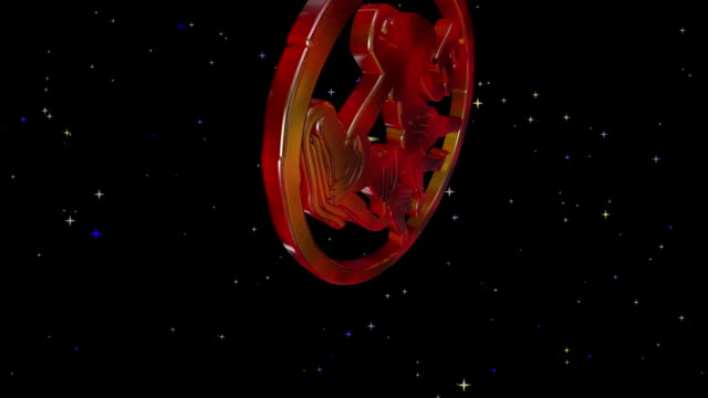 3D  Zodiac video