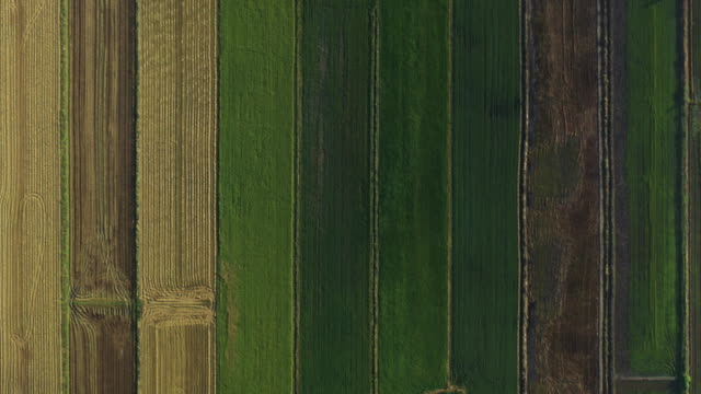 Zoom in agriculture field pattern