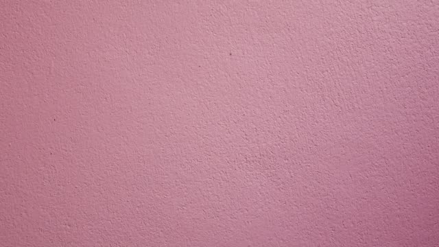 Zoom in pink wall background.