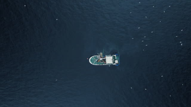 vídeos de stock e filmes b-roll de zoom out of a commercial ship fishing with trawl net on the sea. top down view. - fishing boat
