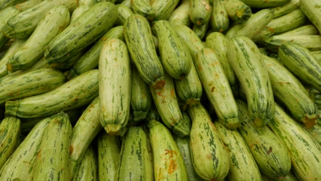 zucchini at farmer's market - zucchini video stock e b–roll